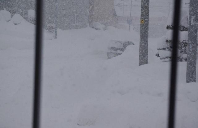 雪IMGP6590
