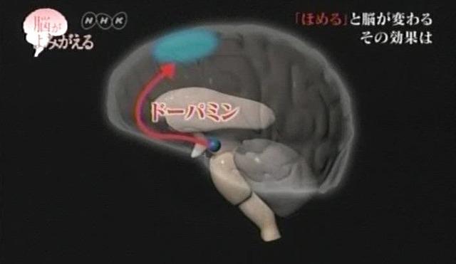 脳が甦る15