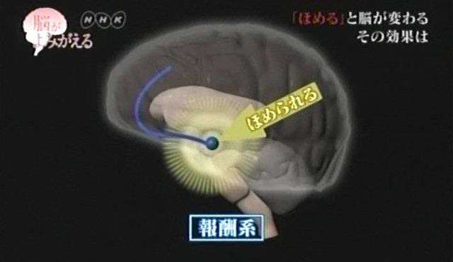 脳が甦る14