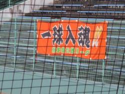 P8230191金太郎横断幕