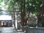 2012-07-16 こんぴらさん本宮前