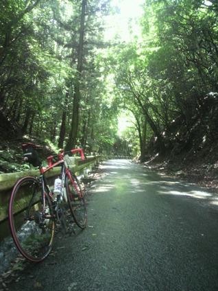 六丁峠への道