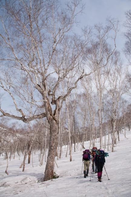 konbu201204 (14)