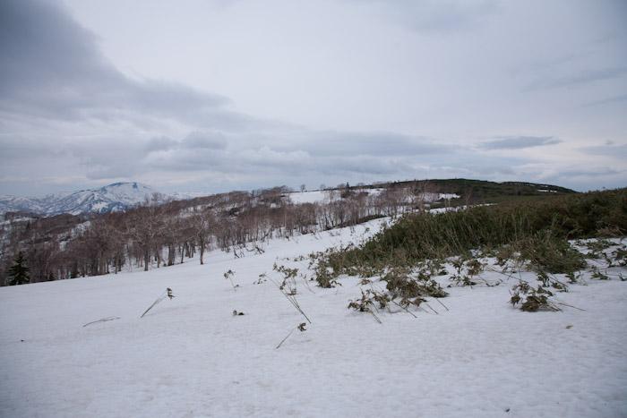 20120506muine (32)