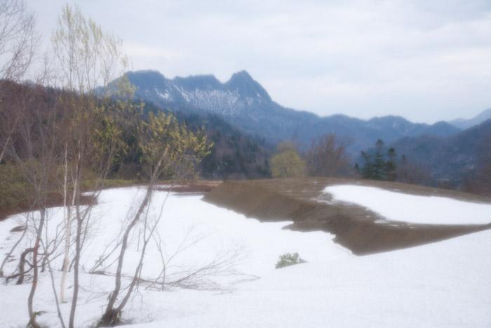 20120506muine (38)