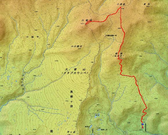 midori 地図