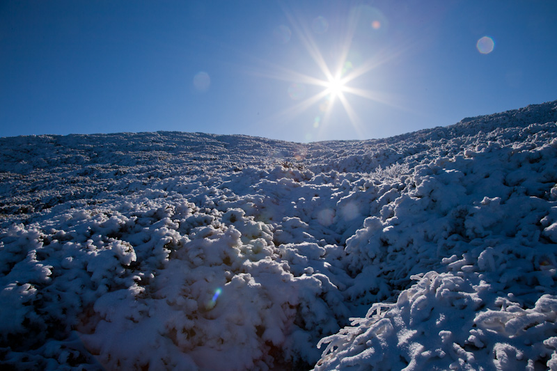 羊蹄山20121027-2716