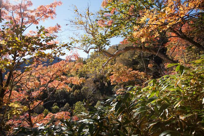horohoro20121013-2161.jpg