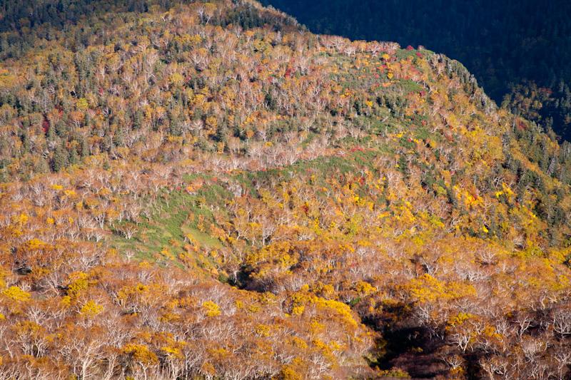 kurodake20121007-2005.jpg