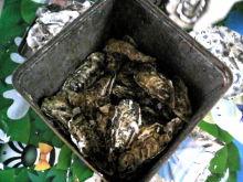 獣の足跡をたどって・・・-牡蛎いっぱい2.JPG