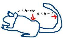 獣の足跡をたどって・・・-走るの図