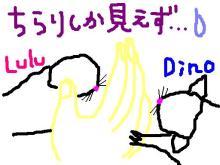 Dino & Lulu☆-ご対面の図