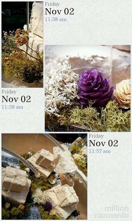 12-11-7-100.jpg