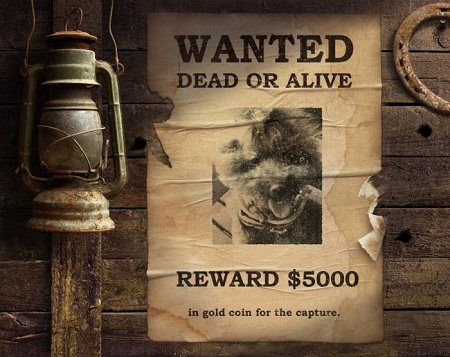 PF_Wanted_Poster_25072012135228445.jpg