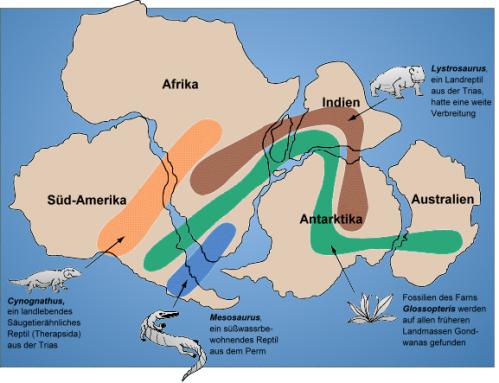 ゴンドワナ大陸と古生物化石の分布図