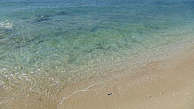 貝殻の砂浜