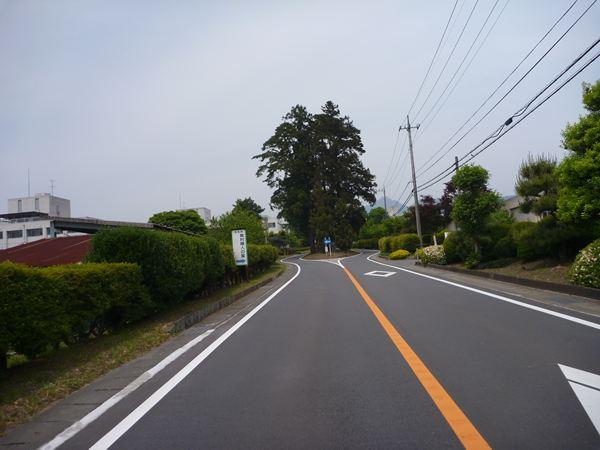 P1030661_R.jpg