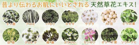 EGF・無添加オールインワンゲルに 天然草花エキス配合!