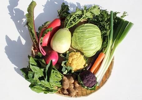 冬野菜セット_R3