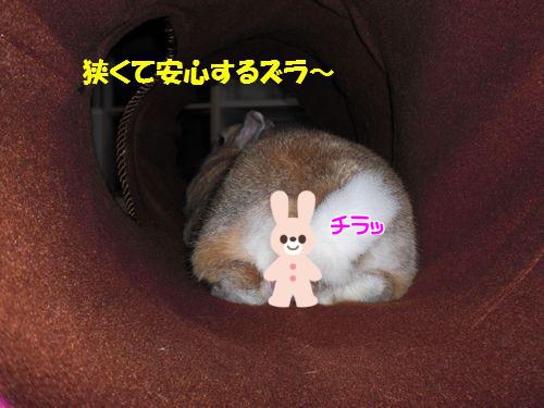 トンネル遊び6