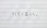 P1010694.jpg