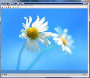 2012_09_10_41.jpg
