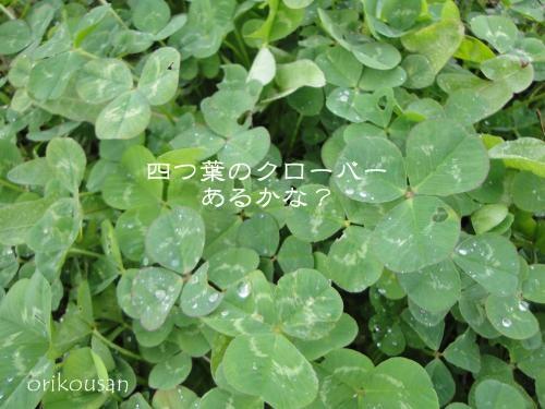 20130407asa-7.jpg