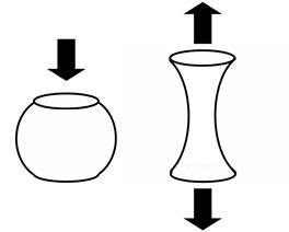 zu-1.jpg