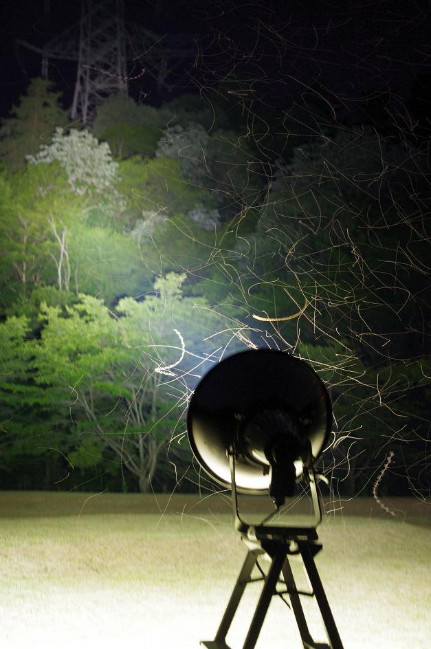 20120602light4