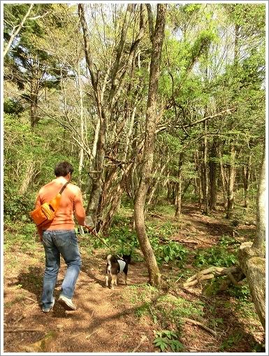 12.05.05 もみの木森林公園 027