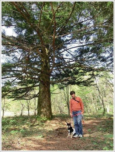 12.05.05 もみの木森林公園 026