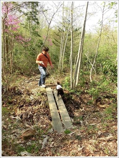 12.05.05 もみの木森林公園 036