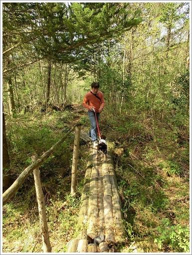 12.05.05 もみの木森林公園 037