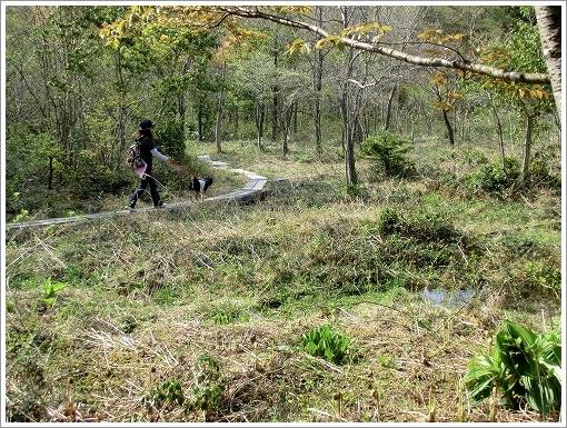12.05.05 もみの木森林公園 043