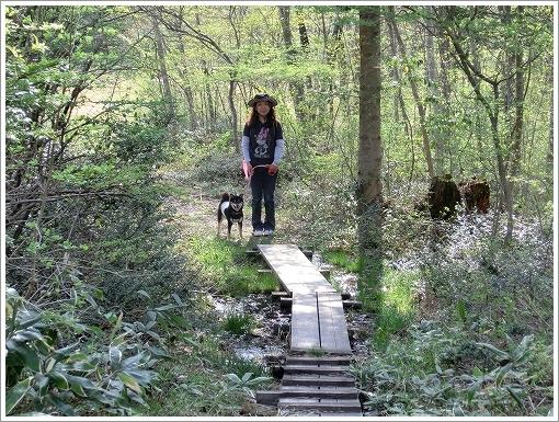 12.05.05 もみの木森林公園 045