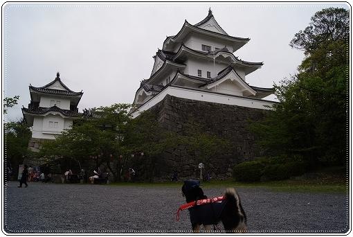 12.04.30 伊賀上野城 (5)