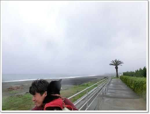 12.05.01 熊野 (2)
