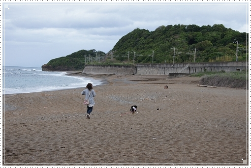 12.05.02 和歌山 千里の浜