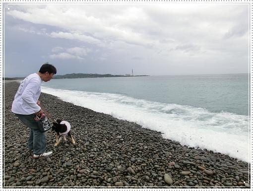 12.05.02 和歌山 煙樹ヶ浜 (2)