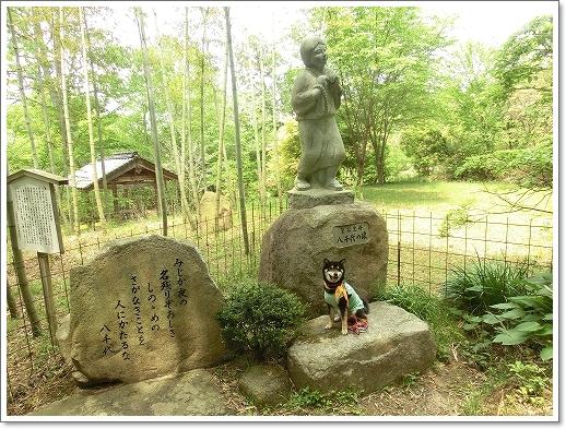 12.05.13 たかむら山 竹林寺 (5)