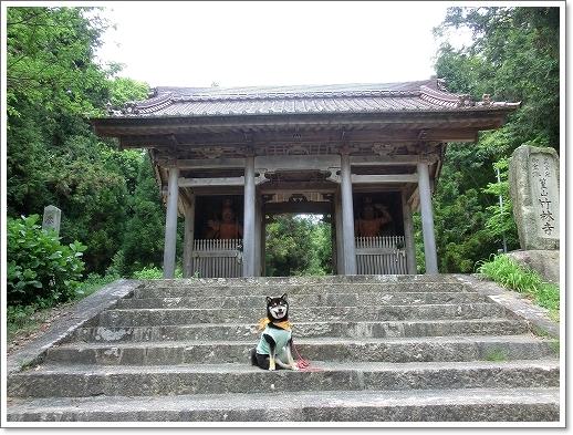 12.05.13 たかむら山 竹林寺 (11)