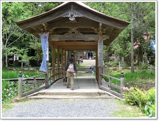 12.05.13 たかむら山 竹林寺 (14)