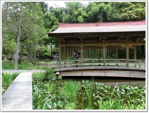 12.05.13 たかむら山 竹林寺 (16)
