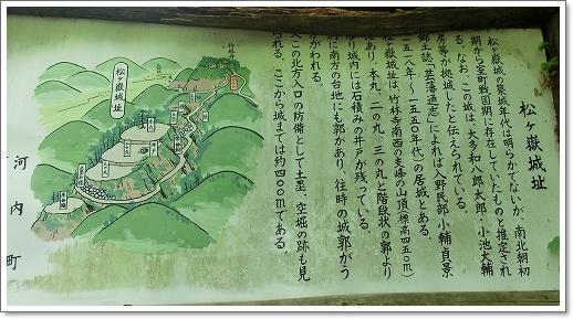 12.05.13 たかむら山 竹林寺 (22)