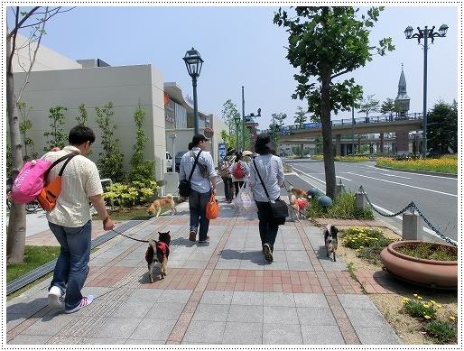 12.05.27 倉敷柴犬オフ会 012
