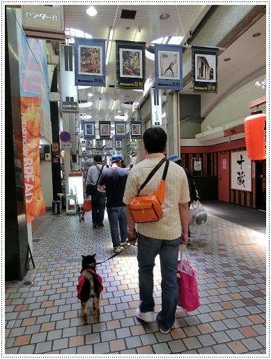12.05.27 倉敷柴犬オフ会 018