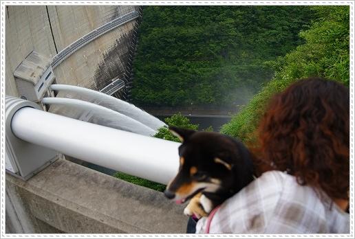 12.07.14 温井ダム&千年杉