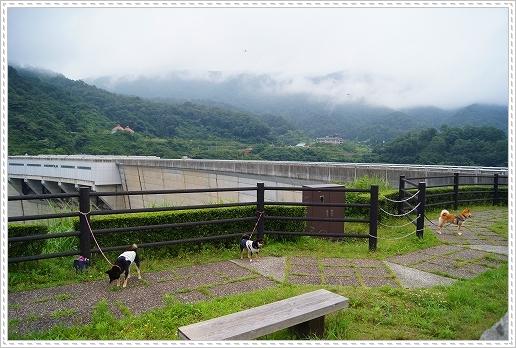 12.07.14 温井ダム&千年杉 (2)