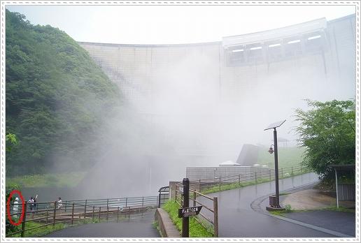 12.07.14 温井ダム&千年杉 (6)