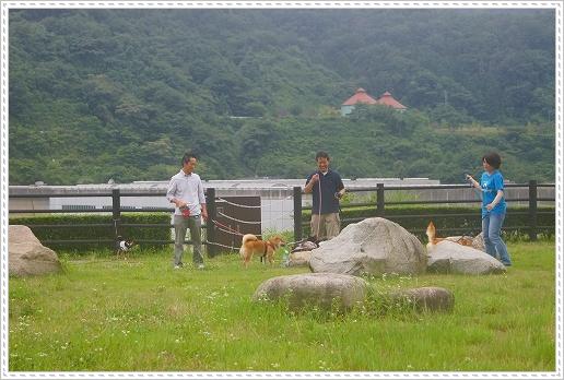 12.07.14 温井ダム&千年杉 (10)